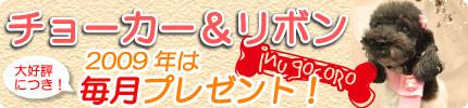 2009年からのスペシャルサービス☆