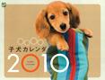 うとうと子犬カレンダー