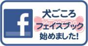 bana_facebook_ig.jpg