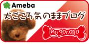 ameba_blog_ig.jpg