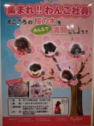 犬ごころの桜の木を満開にしよう!