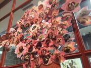 桜の木 ららぽーと 咲いてきました~☆