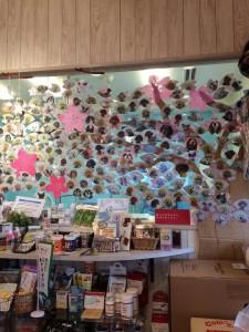 DS 犬ごころの桜の木を満開にしよう!