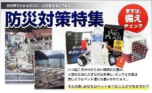 disaster_main