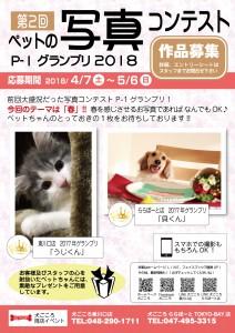ペットの写真コンテスト_P1グランプリ2